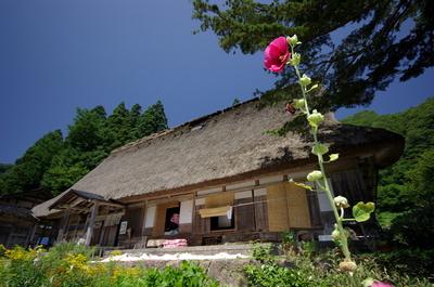 Gokayamaaikura02